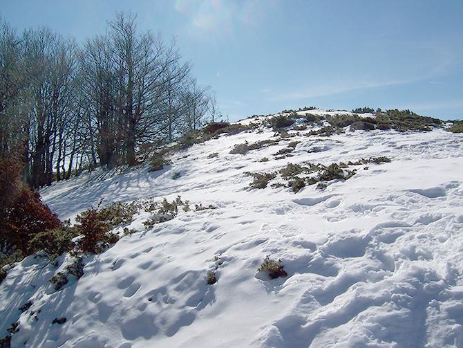 MATAGALL-Febrero-2011-016